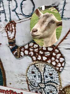 Tilly the goat at Mountfitchet Castle