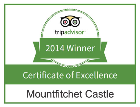 Mountfitchet Castle on Trip Advisor