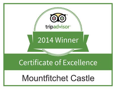Mountfitchet Castle on Trip Advisor